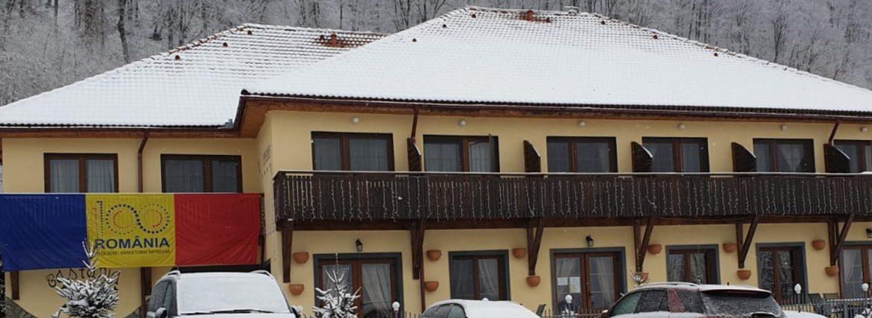castania_iarna.jpg